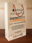 Ламинированный бумажный пакет Energy 2012 250 x 390 x 90 mm