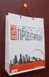 Бумажный пакет ламинированный День проектировщика 2012